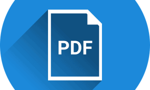 Reasons PDFBear is the Best Online Tool for PDF to Word Conversions