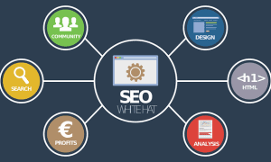 SEO Essentials for Your New Website